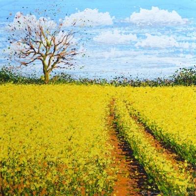 Angelique-Hartigan-Yellow-Field