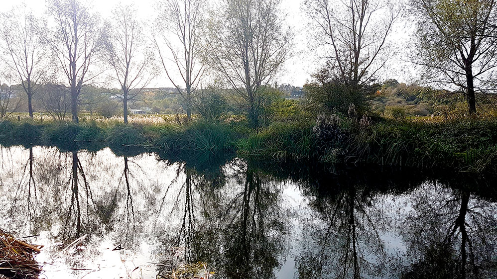 River Bank at Maldon